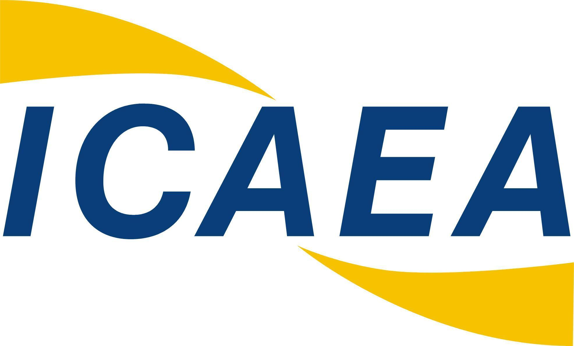 ICAEA Workshop Images