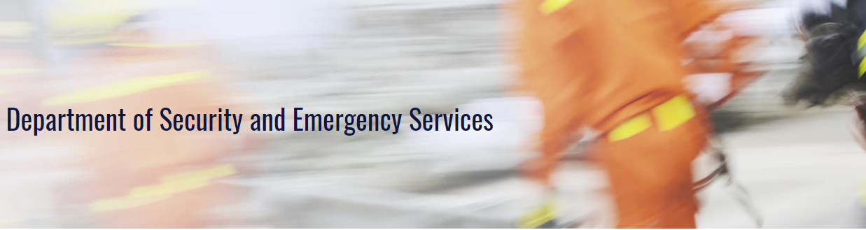 Security and Emergency Services - Worldwide