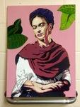 Marco de Frida