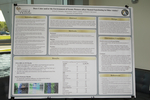 HF Poster Session-21
